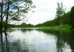 Фото1. Искусственный пруд без строительных матералов. Грунтовый пруд без бетона и плёнки.