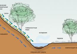 Террасы - основной элемент пермакультуры Зеппа Хольцера для экологического обустройства участков.