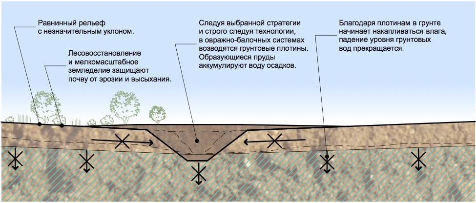 Восстановление земель по принципам пермакультуры Зеппа Хольцера
