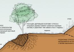 Террасы - основной элемент пермакультуры Зеппа Хольцера
